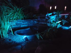 blue lights highlight an outdoor pond in a northwest Calgary backyard